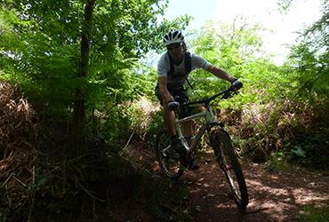 VTT dans les bois Abicyclette Voyages