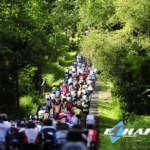Peloton traversant une forêt Echappée - Course Pierre Le Bigaut Abicyclette Voyages