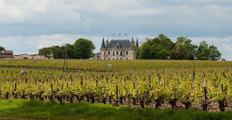 château récoltant vignerons bordeaux