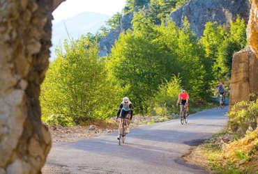 arbres cyclistes falaise route