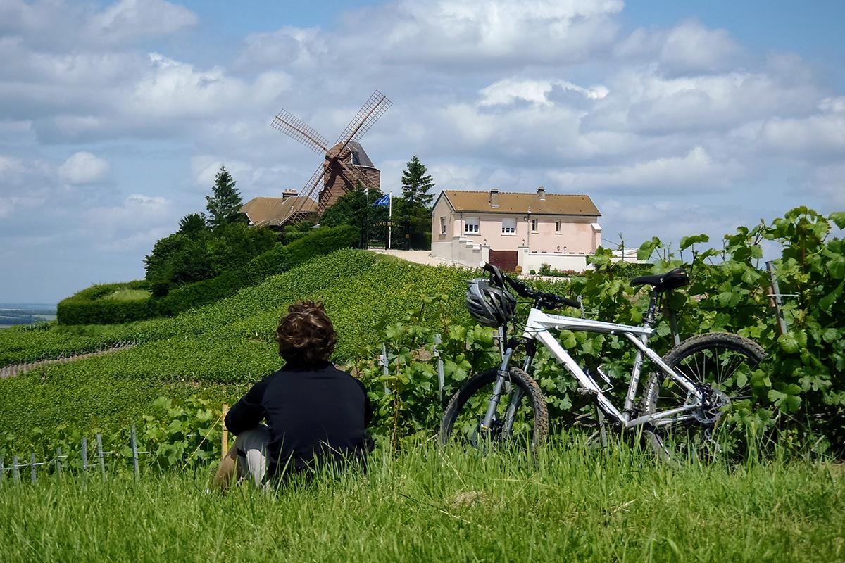 Cycliste de dos dans la nature avec vue sur n moulin en champagne