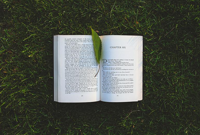 Livre dans l'herbe