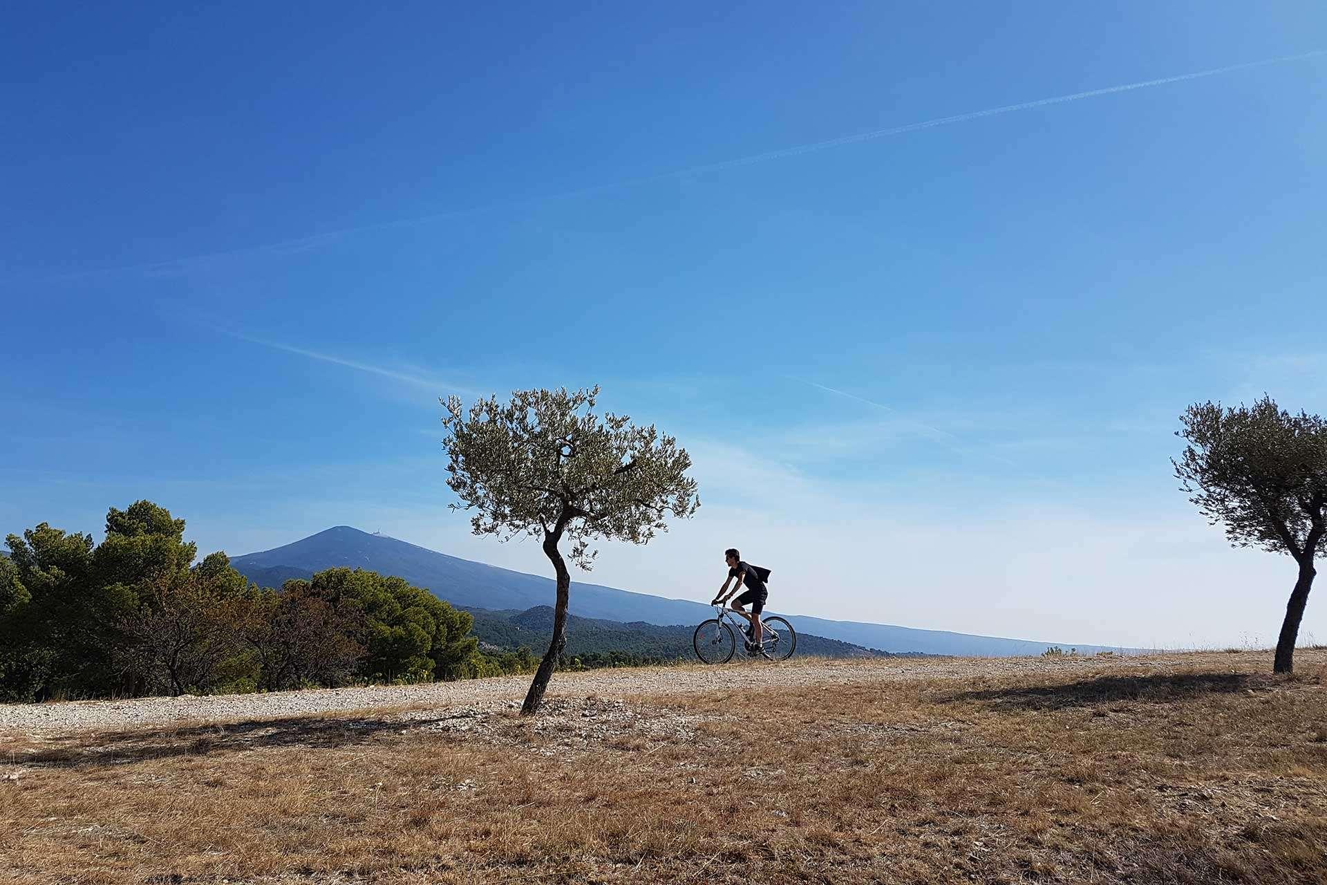 Men on bike in Provence Travel