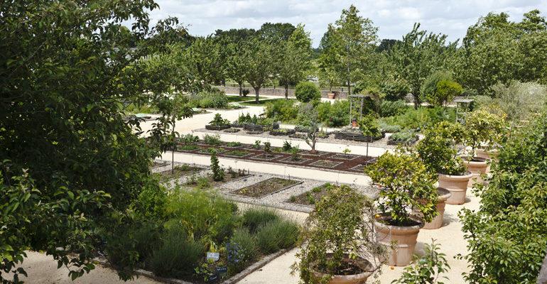Vue large d'un jardin botanique Abicyclette Voyages à vélo