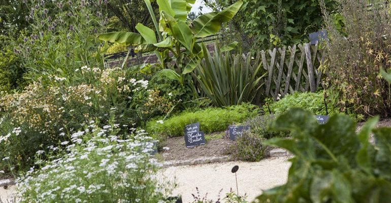 Détails d'un jardin botanique Abicyclette Voyages à vélo