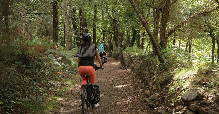 Couple à vélo sur un chemin dans une forêt Le Tour du Golfe du Morbihan