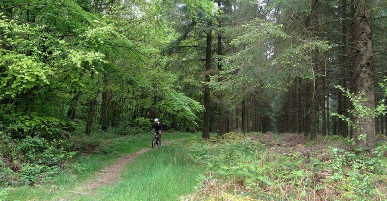 Homme à VTT dans la forêt de Huelgoat VTT A l'assaut des Monts d'Arrée Abicyclette Voyages à vélo