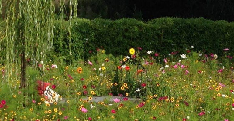 Jardin fleuri Abicyclette Voyages à vélo