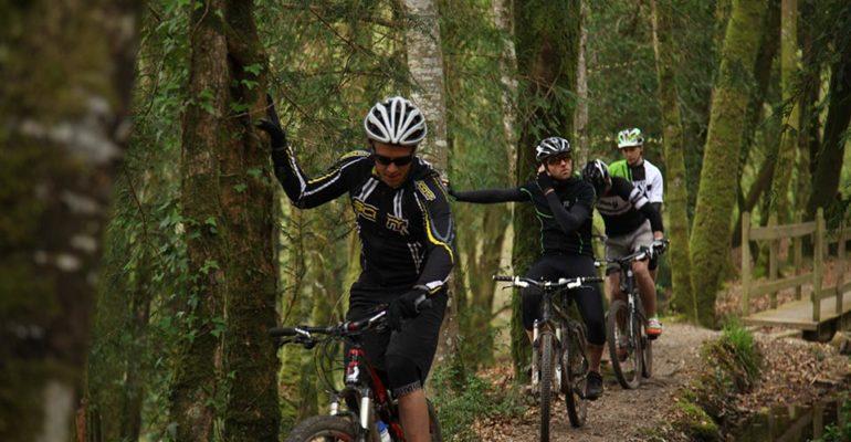 4 hommes à VTT s'appuient contrent des arbres VTT A l'assaut des Monts d'Arrée Abicyclette Voyages à vélo