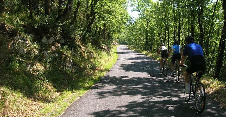 3 cyclistes sur une route traversant une forêt du Perigord Abicyclette Voyages à vélo