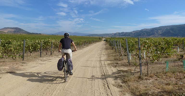 Cycliste sur chemin de terre au milieu des vignes La vallée du Douro