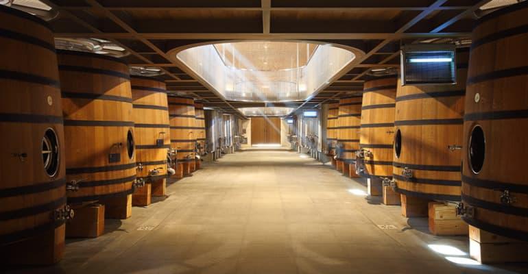 Cave de Bordeaux grands fûts de bois, étape visite et dégusatationséjour à vélo