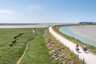 Couple à vélo sur les voies vertes de la baie de somme à vélo